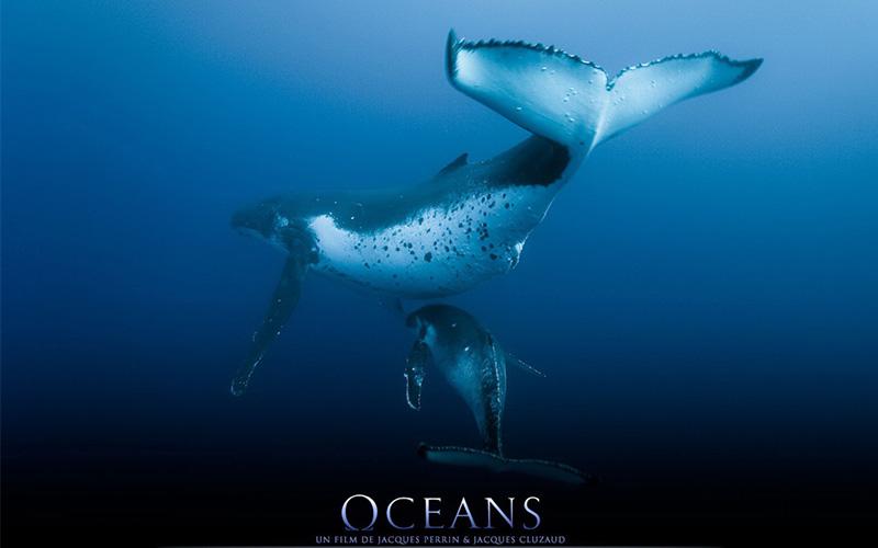 Oceans-